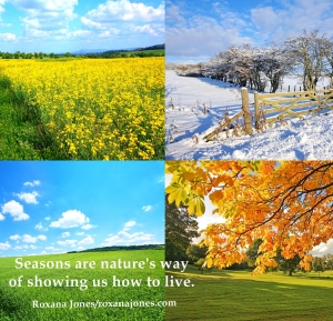 inspirational-motivational-image-quotes-quotations-quotes-of-the-day-roxanajones-com-ever-changing-seasons