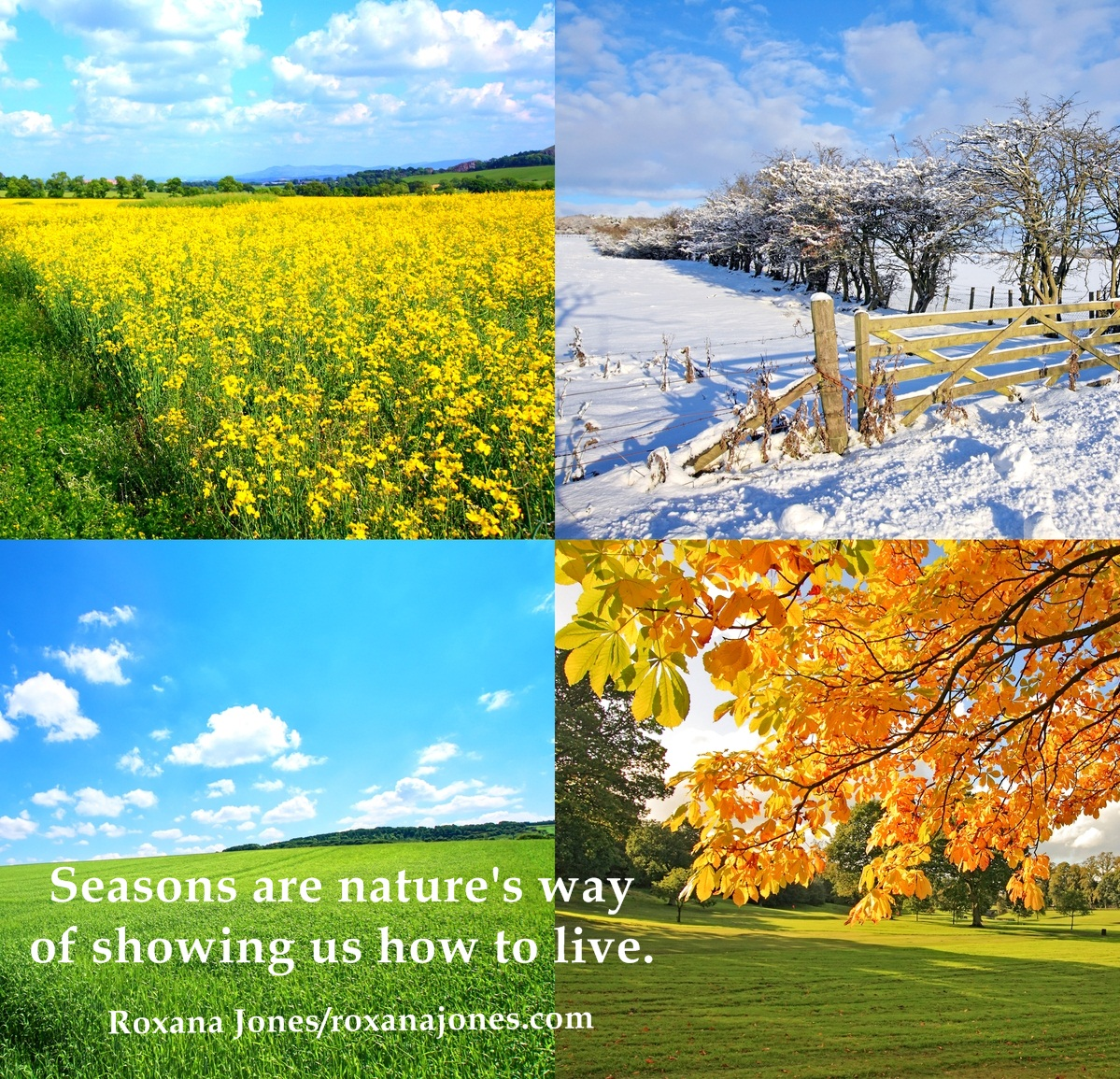 Seasons Of Life Quotes Worklife Balance.or