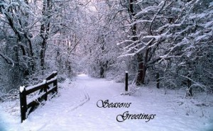 seasons-greetings-snow-trees-road-gate